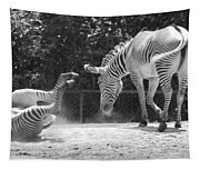 The Back End In Black And White Tapestry