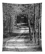 The Beaten Path Tapestry