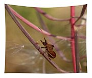 The Bug With Fireweed Seeds Tapestry