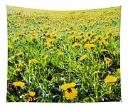 The Burren, County Clare, Ireland Field Tapestry