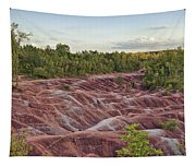 The Cheltenham Badlands Tapestry
