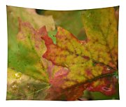 The Colors Of Fall  Tapestry