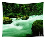 The Dosewallups River  Tapestry