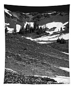 The East Slopes Of Mount Rainier II Tapestry