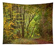 The Forest Tapestry