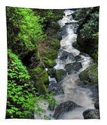 The Gorge Tapestry