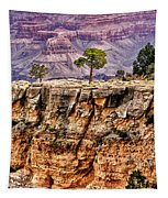 The Grand Canyon Iv Tapestry