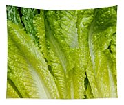 The Heart Of Romaine Tapestry
