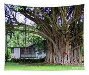 The House Beside The Banyan Tree Tapestry