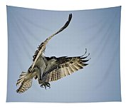 The Magnificent Osprey  Tapestry