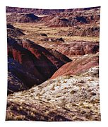 The Painted Desert  8023 Tapestry