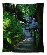 The Path To Iron Creek  Tapestry