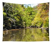 The Quiet Wissahickon Tapestry