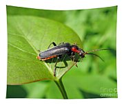 The Rednecked Bug- Close Up 2 Tapestry