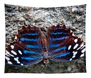 The Royal Blue Butterfly Tapestry