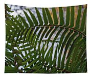 The Shade Of A Fern Tapestry