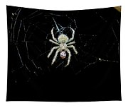 The Spider Tapestry