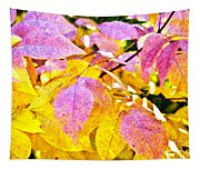 The Warm Glow In Autumn Abstract Tapestry