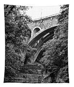 The Wissahickon Creek And Henry Avenue Bridge Tapestry