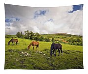 Three Horses Grazing In Field Tapestry