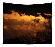 Tn Sunset Nov-11 Tapestry