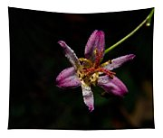 Toad Lilly 2 Tapestry