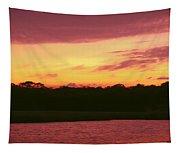 Tomoka River Sunset Tapestry