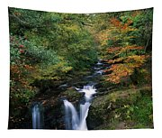 Torc Waterfall, Ireland,co Kerry Tapestry