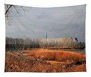 Toronto Skyline 12 Tapestry