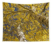 Towering Autumn Aspens With Deep Blue Sky Tapestry