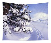 Tracks In The Snow Tapestry