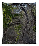 Tree Abstract  Tapestry