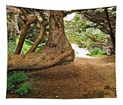 Tree And Trail Tapestry