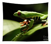 Tree Frog 13 Tapestry