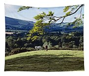 Tree In A Field, Great Sugar Loaf Tapestry