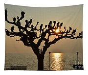 Tree In A Foggy Sunset Tapestry