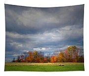 Tree Line On Sunset Hill In New Hampshire Tapestry