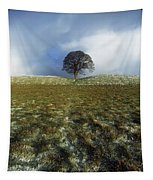 Tree On A Landscape, Giants Ring Tapestry