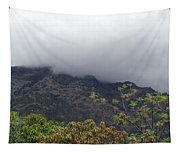Trees And Leaves At The Base Of A Mountain With Clouds And Mist Covering The Top Tapestry