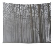 Trees In The Fog Tapestry