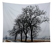 Trees In Winter Tapestry