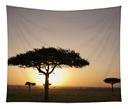 Trees On The Savannah With The Sun Tapestry