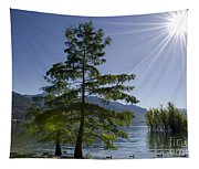 Trees With Sunbeam Tapestry