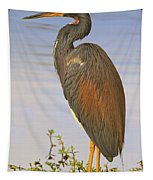 Tricolor Heron Tapestry