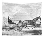 Trotting Horse, 1853 Tapestry