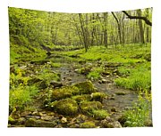 Trout Run Creek 5 Tapestry