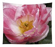 Tulip Angelique Tapestry