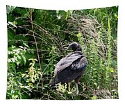 Black Vulture - Buzzard Tapestry