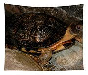 Turtle Time On The Rocks Tapestry