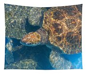 Turtle Underwater,high Angle View Tapestry